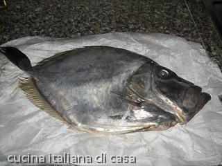 san-pietro-pesce-37.jpg