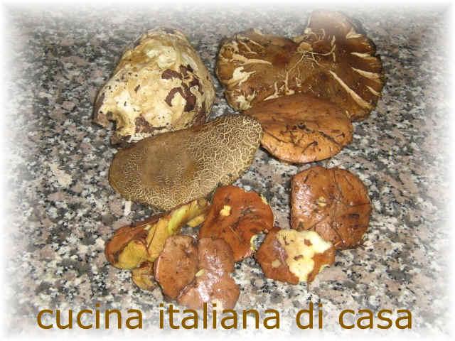Funghi porcini in cotoletta ricetta tradizionale con foto di cucina italiana di casa - Cucina italiana di casa ...