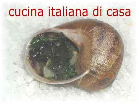 Come preparare le lumache alla bourguignonne ricetta for Ricette alta cucina italiana