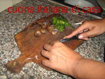 Come preparare le lumache alla bourguignonne ricetta for Cucinare le lumache